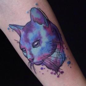 Фото тату кошки в стиле акварель на предплечье девушки