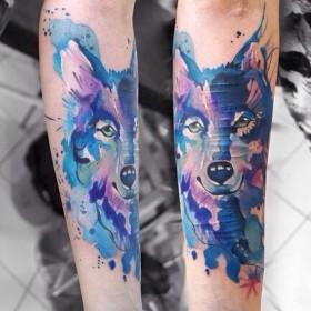 Фото тату волка в стиле акварель на предплечье девушки