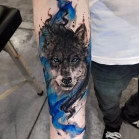 Фото тату волка в стиле акварель на предплечье парня