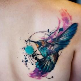 Фото татуировки колибри в стиле акварель на лопатке девушки
