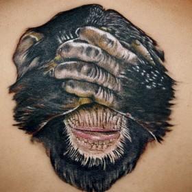 Красивая тату на спине девушки - обезьяна