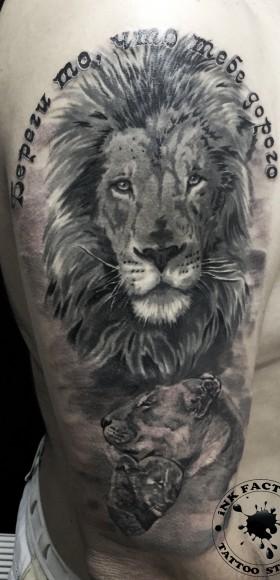 Тату льва на плече парня