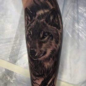 Тату на голени у парня волк