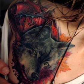 Тату на груди девушки - волк