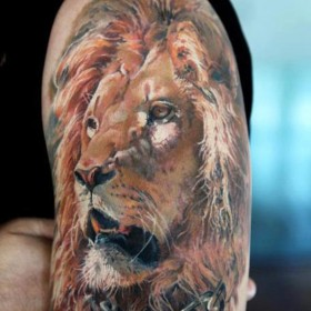 Тату на плече парня - лев с цепью на шее