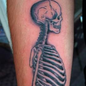 Тату на предплечье парня - скелет