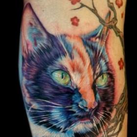 Тату на руке девушки - кошка