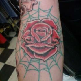 Тату на руке девушки - паутина и роза