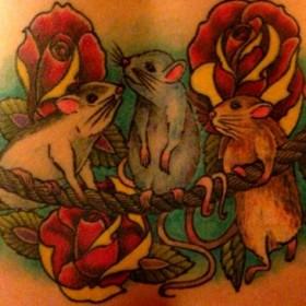 Тату на спине у девушки - мыши и розы