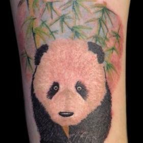 Тату на щиколотке девушки - панда