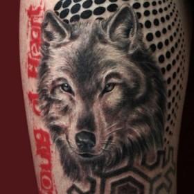 Татуировка на бедре у парня - волк