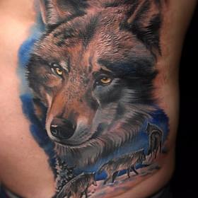 Татуировка на боку у парня - волки