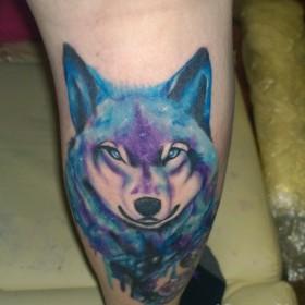 Татуировка на голени у парня - волк