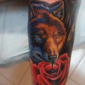 Татуировка на голени у парня - волк и роза