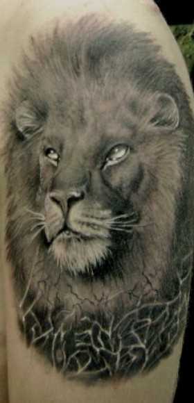 Татуировка на плече парня - лев