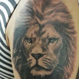 Татуировка на плече у парня - лев