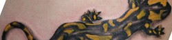 Тату саламандр