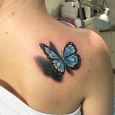 Тату на лопатке девушки - бабочка