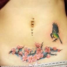 Тату на животе девушки - сакура и колибри