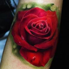 Татуировка на бицепсе девушки - красная роза