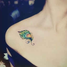 Цветная тату у девушки на ключице в виде пера павлина