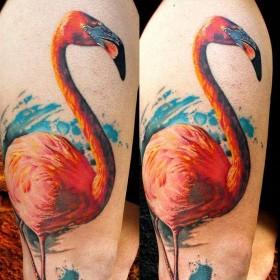 Изображение фламинго на ноге женщины