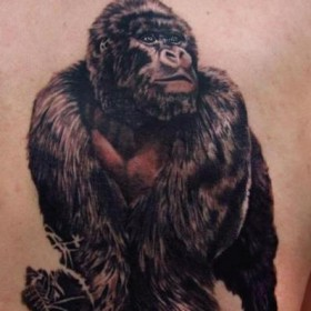 Красивая тату на спине парня - обезьяна