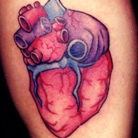 Татуировки под сердцем 14