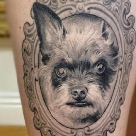 Тату на бедрах у девушки - собака в рамке