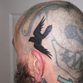 Тату на голове парня - ворон