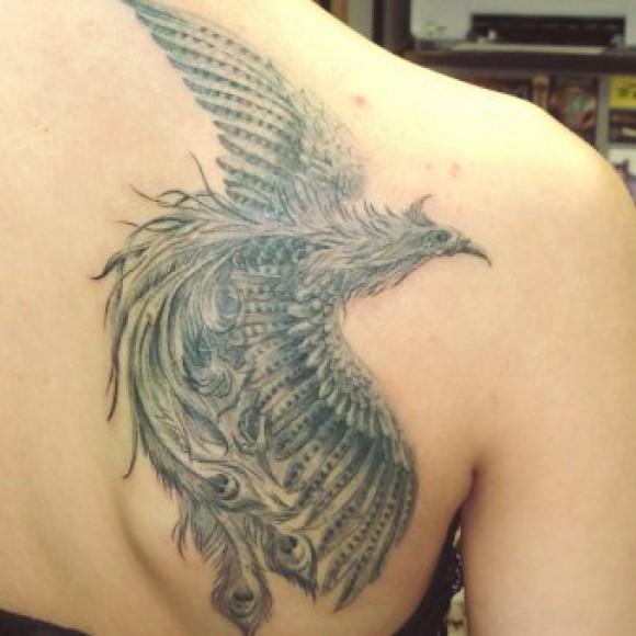 спине тату на фото мужская феникс