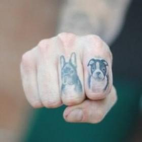 Тату на пальцах парня - головы собак