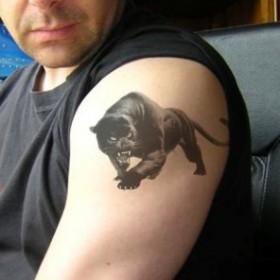 черная пантера фото тату