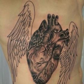 Тату на ребрах парня - крылья и сердце