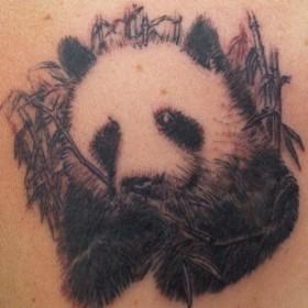 Тату на спине девушки - панда