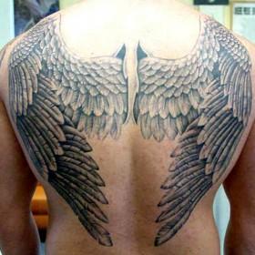Тату на спине парня - большие крылья