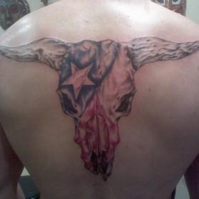 Тату на спине парня - череп головы быка