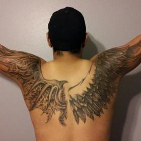 Тату на спине парня - крылья