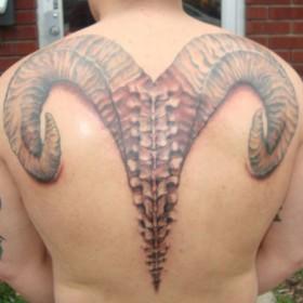 Тату на спине парня - знак зодиака овен