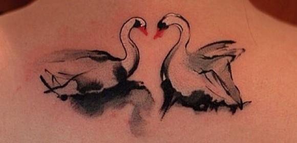 Тату на спине у девушки - лебеди