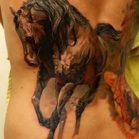 Тату на спине у девушки - лошадь