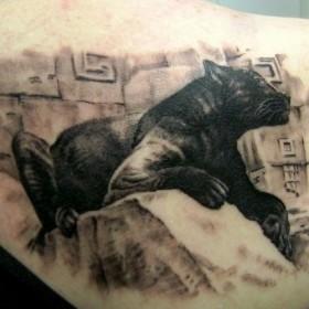 Тату на спине у девушки - пантера
