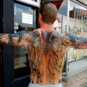 Тату на спине у парня - крылья