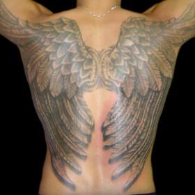 Тату у парня на спине - крылья