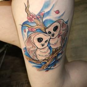 Татуировка на бедре у девушки - совы