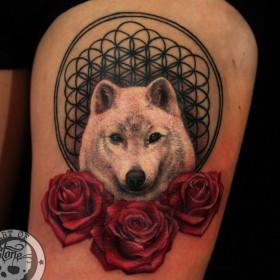 Татуировка на бедре у девушки - волк и розы