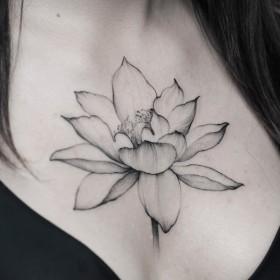 Татуировка на груди у девушки - лилия
