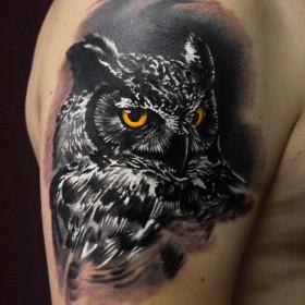 Татуировка на плече у парня - филин