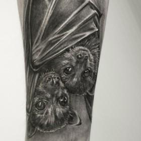 Татуировка на предплечье у парня - летучие мыши