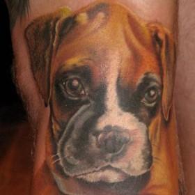 Татуировка на руке у парня - собака